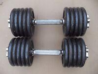 Pair Pro power cast iron dumbbells - 2 x 14kg = 28kg