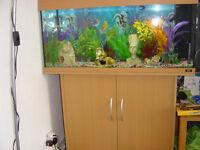 JUWEL RIO 180 FISH TANK AQUARIUM & STAND & EXTRAS COMPLETE SET UP