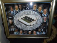 kings of the hawthorns 2002