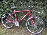 raleigh firefly 19 in frame cycle,nice condition,runs well
