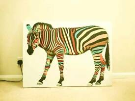 Multi colour zebra canvas