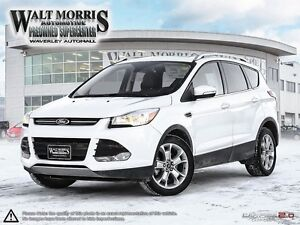 2014 Ford Escape Titanium - LEATHER, HEATED SEATS, REAR VIEW CAM