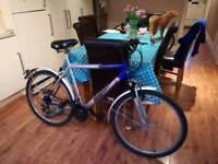 Mountain bike size large