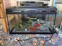 4 fish tanks 50 each