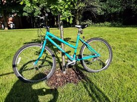 Womens Bike (turquoise, with lights)