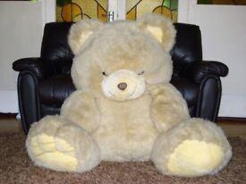Giant Teddy Bear- new