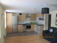 Two Bedroom Furnished APT. Malone Place, Available from 7th December