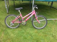 Girls pink Raleigh bike with gears 11' frame, 17' wheels
