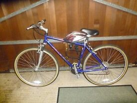 Raleigh Bicycle 21 gears in great condition