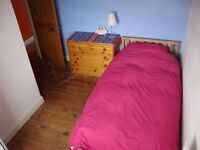 Single room in cosy Totterdown home available Mon-Fri