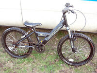 "RALEIGH BOYS 20"" WHEEL FRONT SUSPENSION MOUNTAIN BIKE SERVICED READY TO GO"