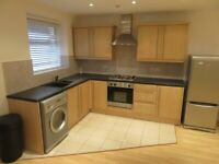 RENOVATED ALDGATE EAST E1 1-BED APARTMENT TO RENT IN PRIVATE PATIO COUPLES PROFESSIONALS