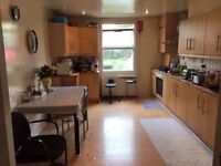 -MASTER SINGLE ROOMS IN THE SAME HOUSE AVAILABLE NOW !-