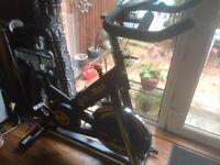 Exercise Bike- BodyMax B15 £350 ono