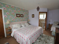 BED AND BREAKFAST FOR SALE OR RENT IN KIELDER , NORTHUMBERLAND
