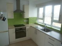 Spacious 2 double bedroom flat close to transport (zone 2)