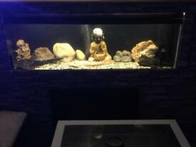 Tropical fish tank 4 foot