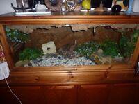 hand made wooden terrarium for sale