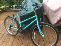 Ladies/Girls Bicycle