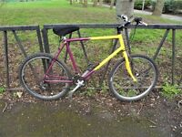 """Large 23"""" Frame Mountain Bike. 18 Speed. Fully Serviced & Ready To Ride. Guaranteed."""
