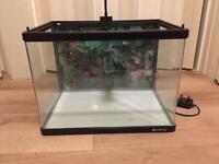 Small fish tank/aquarium 40L