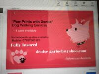 Reliable Dog Walker available in Aberdeen