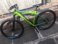 Bike Carrera Sulcata