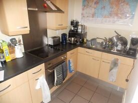 Available immediately is this modern one bedroom apartment in E1W