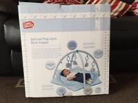 Deluxe Play Gym Blue Puppy Brand New