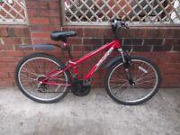 Boys/girls mountain bike 13 inch frame, 24 inch wheels, 18 speed, no punctures, brakes good.