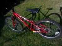 Apollo XC24 child's / young teen mountain bike
