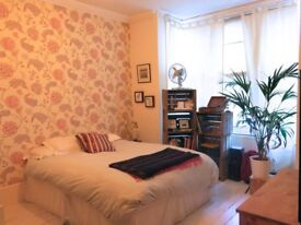Large double bedroom for rent in garden flat in Peckham / Camberwell area