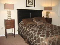 Large 2 bedroom condo available Feb 1, 2016