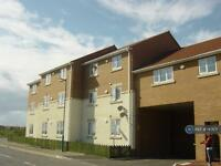 2 bedroom flat in Warren Road, Hartlepool, TS24 (2 bed)