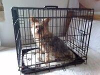 Black medium dog crate.