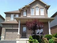 Beautiful single house for rent