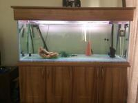 Fish tank for sale 5x2x2