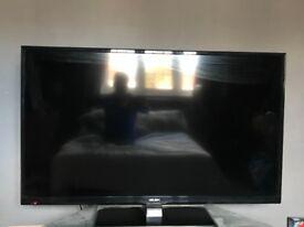 """FULL HD 1080p 50"""" TV BUSH"""