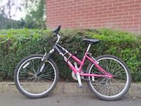 Girl's/Lady's Raleigh Bicycle