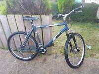 Adults Raleigh TIGERSHARK mountain bike for sale