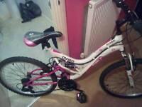 Avigo bike