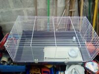 Rabbit Hutch (Guinea Pig, Ferret)