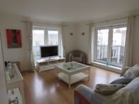 CENTRAL LONDON- BEAUTIFUL ONE BEDROOM FLAT- MOVE IN NOW!