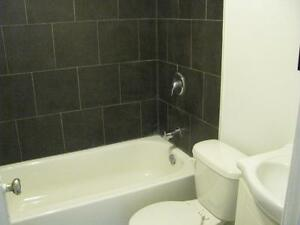 1 Bedroom Apartment Renovated Apartment Ready to Move In Kitchener / Waterloo Kitchener Area image 7