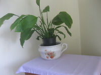 Vintage chamber pot with Peace Lily