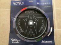 "Pegasus specialist Diamond 12"" disc (New)"