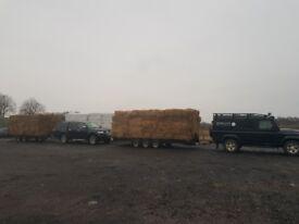 Tight square straw bales