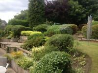 Martin Talasek Gardening Services