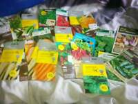 24 x unopenen vegetable seed packets