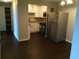 Free month on Remodeled and Upgraded 2 Bedrooms Suites! Kitchener / Waterloo Kitchener Area image 2